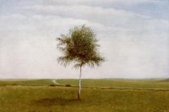 (G 89)   van Hilmar Schäfer
