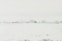 2078       Winterlandschap (Groningen)   -   Hilmar Schäfer - zp
