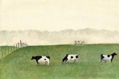 1033      Weiland met koeien   -  Hilmar Schäfer -  zp