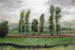 1036      Landschap   -   Hilmar Schäfer - zp