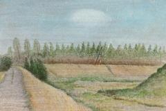 1043      Landschap met witte wolk    -   Hilmar Schäfer - zp