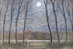 1044        Maanlicht met witte wolk   -   Hilmar Schäfer - zp