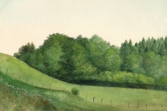 1054       Heuvellandschap    -   Hilmar Schäfer - zp