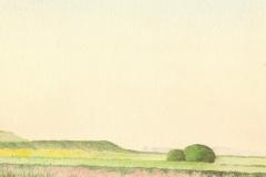 1098        Landschap   -   Hilmar Schäfer - zp