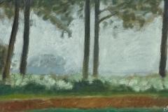 2048        Berm met bomen   -   Hilmar Schäfer - zp