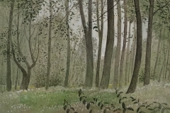 3004          In het bos  -  Hilmar Schäfer - zp