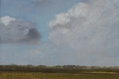 3005         Landschap Friese Wouden (Friesland)   -   Hilmar Schäfer - zp