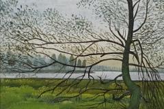 3007       Oude Wilgenboom   -   Hilmar Schäfer - zp