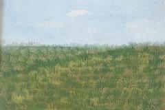4023        Gras   -  Hilmar Schäfer - zhl