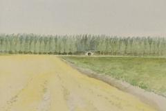 8       Landschap   -   Hilmar Schafer - zp