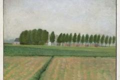 Landschap 2  -  Hilmar Schäfer - mhl