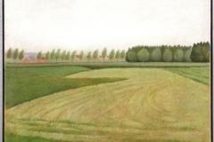 Landschap met gemaaid grasveld  -  Hilmar Schäfer - mhl
