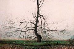 Oude Wilgenboom  -  Hilmar Schäfer - zhl