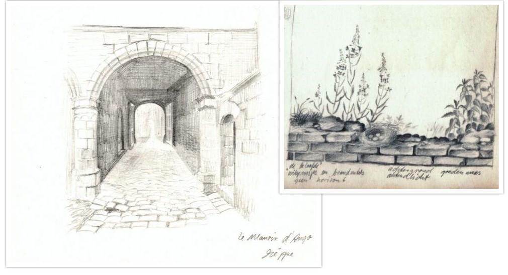 Schets stenen poort en vogelnestje op stenen muur getekend door Hilmar Schäfer